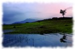 Wayanad tour packages-karappuzha