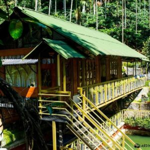 Elevated poolfront holiday cottages in wayanad