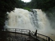 abbey waterfalls coorg