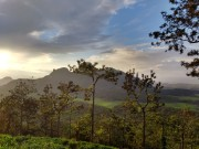 Thovarimala viewpoint Wayanad