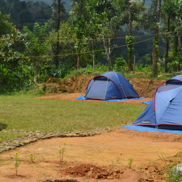 tents at wayanad camping site