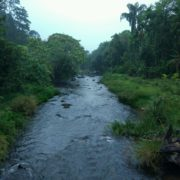 Riverside nature walk wayanad
