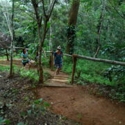 Nature walk - sunrise valley Resort wayanad