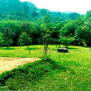 View - Vythiri greens